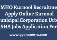 DMHO Kurnool Recruitment Application Form