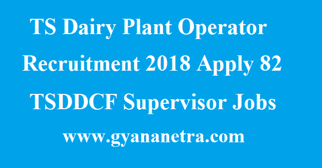 TS Dairy Plant Operator Recruitment