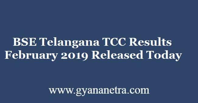 BSE Telangana TCC Results February 2019