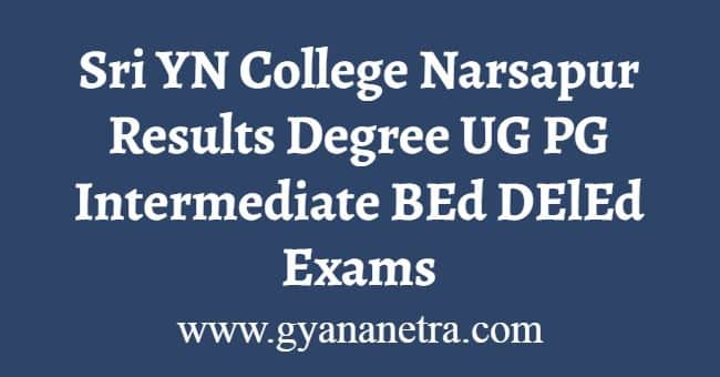 Sri YN College Narsapur Results