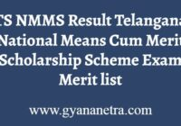 TS NMMS Results