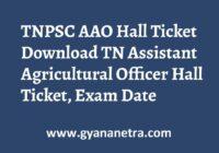 TNPSC AAO Hall Ticket Exam Date