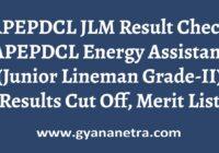 APEPDCL JLM Result Energy Assistant Merit List